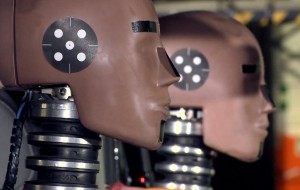 Euroncap crash test dummy head